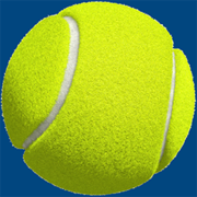 www.tennisrecord.com
